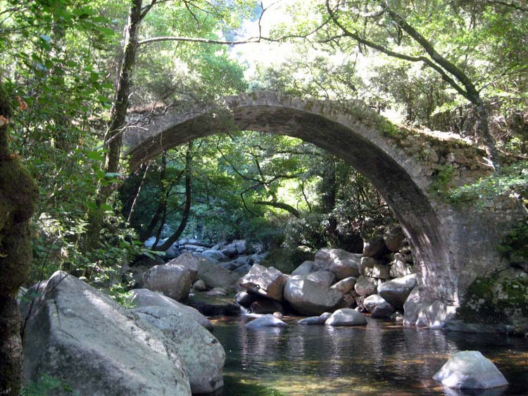 pont genois