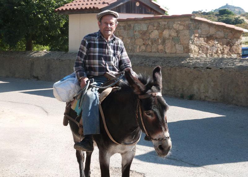 corse sur son âne à Sant Antonino