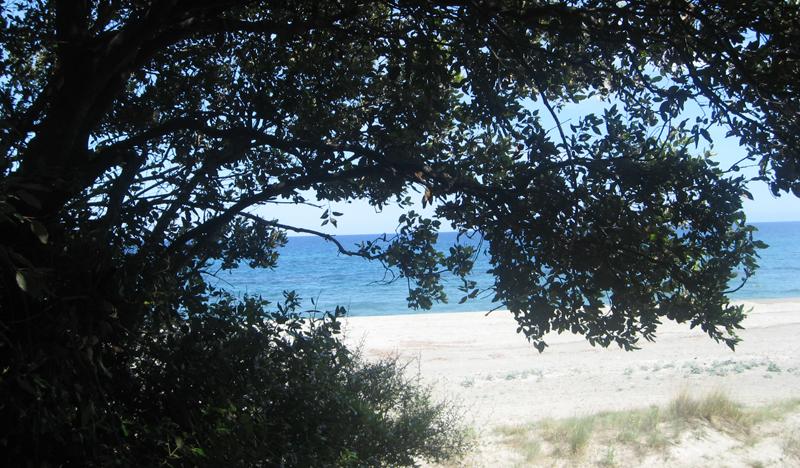plage-cote-orientale