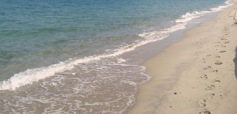 plage-de-vignale